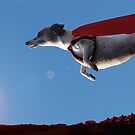 Superdog by Andy Harris