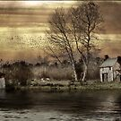 Home on the Levels by JamieP