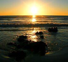 Port Macquarie Sunrise II by Mark Moskvitch
