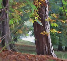 Autumn Giants by hilarydougill