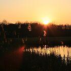 Lakeside Sunset by Matthew Williams