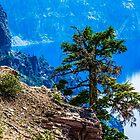 Crater Lake #103 by Richard Bozarth