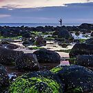 Fishing The Low Tide by Stephen Ruane