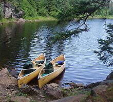 Waiting to Portage by Beth Oberle