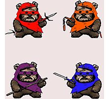 "TEENAGE MUTANT NINJA EWOKS ""TMNE"" Photographic Print"