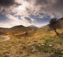Golden Mountains by Tony Elieh