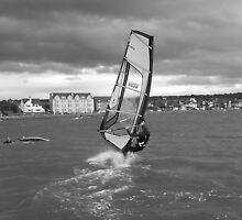 Windsurfer 1 by Debbie Vine