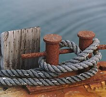 rope and rusty cleat by David Chesluk