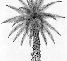 Elegant Palm Tree Sketch by PalmCreator