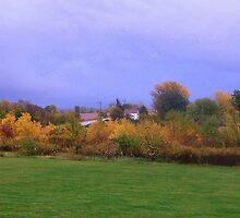 Backyard Prairie by Ogre