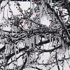 Ice and snow in the midwest by Susan Pettrone