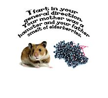 Your mother was a hamster and your father smelt of elderberries. Photographic Print