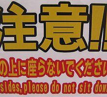 Besides, please do not sit down Engrish by liquid-lemon