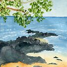 Hawaiian Solitude by Diane Hall