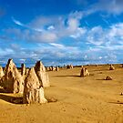 Pinnacles Desert - Nambung National Park, Western Australia by Renee Hubbard Fine Art Photography