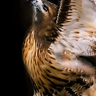 Angel Bird by Cheri  McEachin
