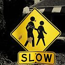 Slow by Vee T