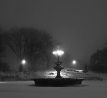 Central Park in the Snow 11 by Brian Ach