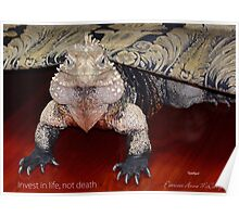 """THINK LIZARDS: """"Invest in life, not death"""" Poster"""