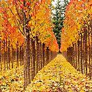 Treescape 1 by Rebecca Cozart
