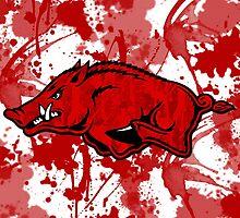 Go Razorbacks! by LindseyLucy8605