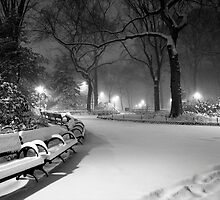 Central Park in the Snow 18 by Brian Ach