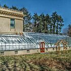 Edison's Greenhouse at Glenmont by Jane Neill-Hancock
