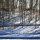 Shadows on the Snow by cclaude