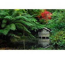 Alfreds Little Boathouse Photographic Print