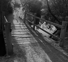NEWPORT LAKES BRIDGE by hugo