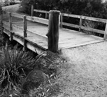 BRIDGE NEWPORT LAKES by hugo