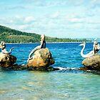 Three Mermaids, Daydream Island, Queensland by Catherine C.  Turner