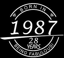 born in 1987... 28 years being fabulous! by birthdaytees