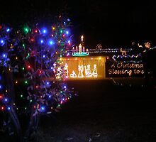 A Manger in a Stable! Christmas Lights in a garden. Adelaide Hills. by Rita Blom