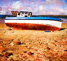 Low Tide by wellman