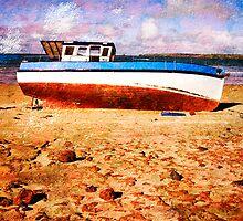Low Tide by wellman