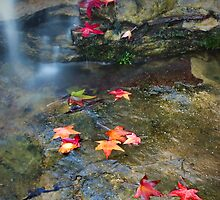 Autumn Waterfall by Annette Blattman