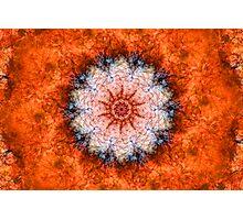 Orange Trip Photographic Print