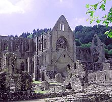 Tintern Abbey 1113 century built by monks rebuilt in 13th and 14th centuries by Joyce Knorz
