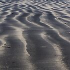 Sandwaves by Court Milley