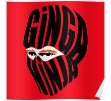 Ginga Ninja Poster