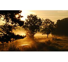 Early summer-morning dreamland Photographic Print