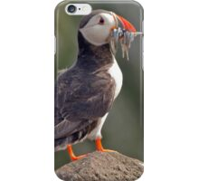 Puffin with sandeels  iPhone Case/Skin
