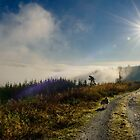 Just above the fog, Brandon Hill, Graiguenamanagh, County Kilkenny, Ireland by Andrew Jones