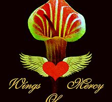 WINGS OF MERCY by Madeline M  Allen