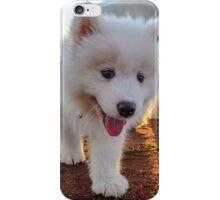 Samoyed puppy on the beach  iPhone Case/Skin