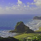 Piha - New Zealand by KarliBelinda