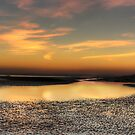 Bexhill Tide by Moth
