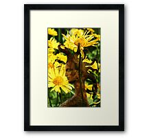 Queen of Flowers (from my exhibition) Framed Print