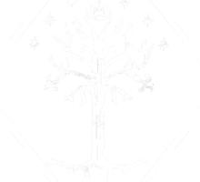 Gondor Fitness Sticker